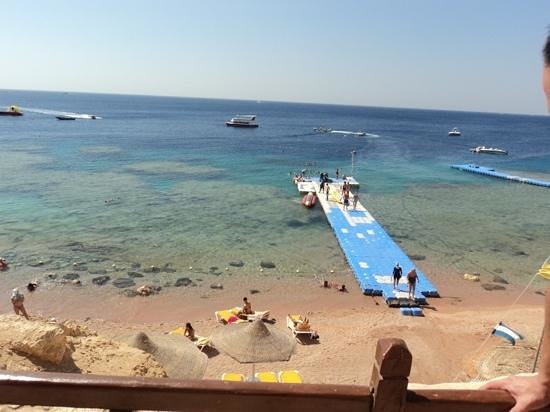 Shark's Bay Spiagge Egitto